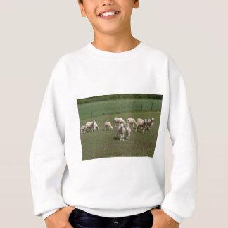 Flock av får t shirts