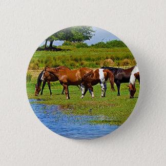 Flock av hästar standard knapp rund 5.7 cm