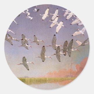 Flock av Ibis som flyger över våtmarker, Runt Klistermärke