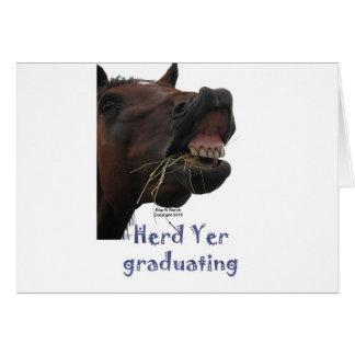 FlockYer som avlägger examen den roliga hästen Kort