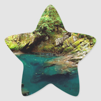 Flod mer regniga Ohanapecosh Mt Stjärnformat Klistermärke