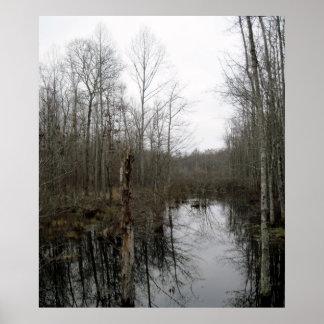 Flod till och med vildmarken poster