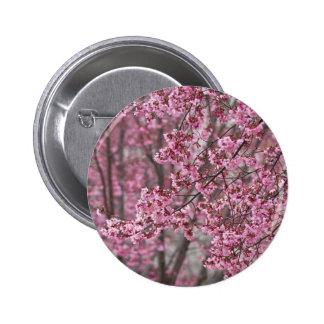 Flödande rosor för Sakura körsbärblommar Standard Knapp Rund 5.7 Cm