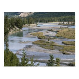 Floder kör till och med en lowland delar upp av vykort