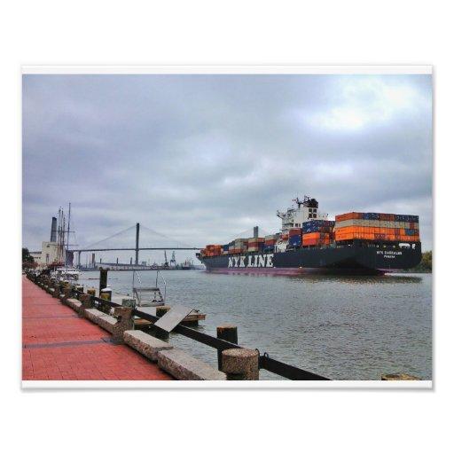 Flodgata, Savannah Foto