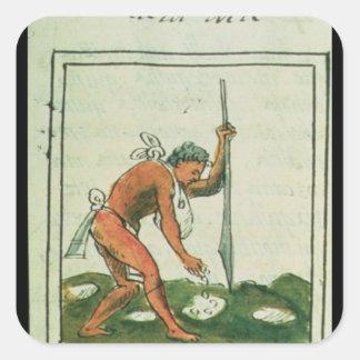 Florentine Codex av Bernardino de Sahagun Fyrkantigt Klistermärke