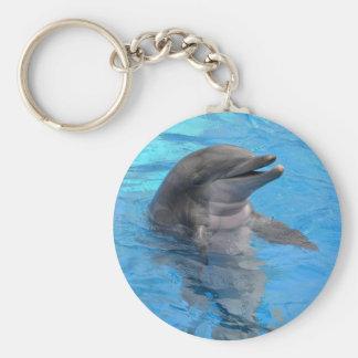 Florida delfin rund nyckelring
