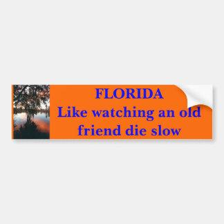 FLORIDA något liknande som håller ögonen på en lån Bildekal