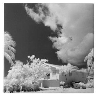 Florida nyckelhus och dess palmträd, USA Kakelplatta