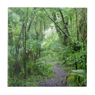 Florida tjusade skog kakelplatta