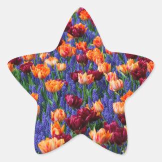 [FLOW-003] Blommafält Stjärnformat Klistermärke