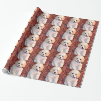 Fluffig valp för vitleksakpudel presentpapper