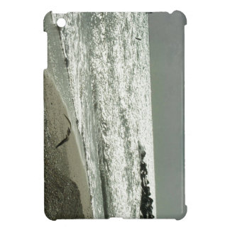 Fluga från stormen iPad mini fodral