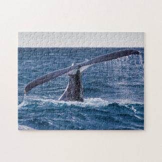 Fluke för puckelryggvalsvan av surfareparadis pussel