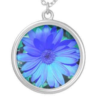 Fluorescerande halsband för blåttGerber daisy