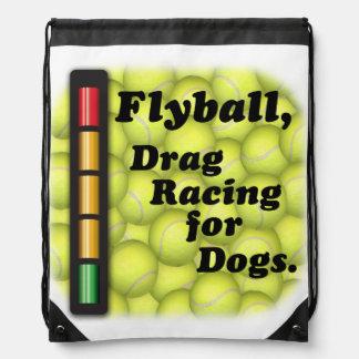 Flyball är friktionstävla för hundar! gympapåse