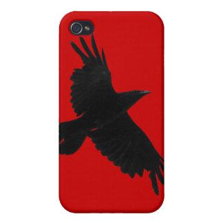 Flyga den korpsvarta djurlivKorpsvart-Älskare iPho iPhone 4 Skydd