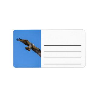 Flygfiskgjuse med en uppsätta som mål i sikt adressetikett