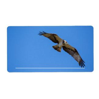 Flygfiskgjuse med en uppsätta som mål i sikt fraktsedel