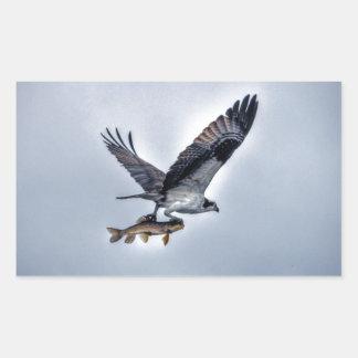 Flygfiskgjuse med Walleye som fiskar HDR-fotoet Rektangulärt Klistermärke