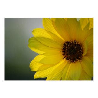 Flyta blomman set av breda visitkort