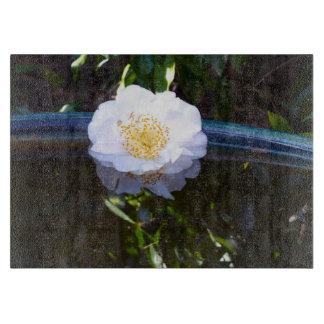 """Flyta den Glass skärbrädan för Camellia 11"""" x 8"""","""