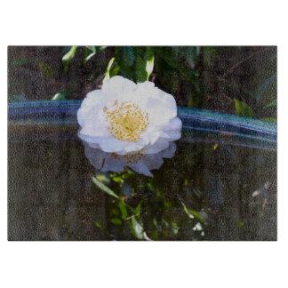 """Flyta den Glass skärbrädan för Camellia 15"""" x 11"""","""