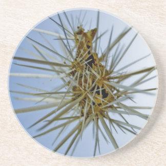 flyta kaktus underlägg