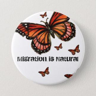 Flyttning är den naturliga monarken mellanstor knapp rund 7.6 cm