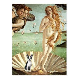 Födelse av venuen Venus - den Boston terrieren #1 Vykort