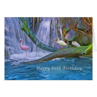 Födelsedag 86th, tropisk vattenfall, vildfåglar hälsningskort