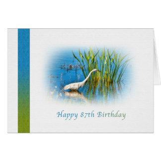 Födelsedag 87th, underbar Egret på damm Hälsningskort