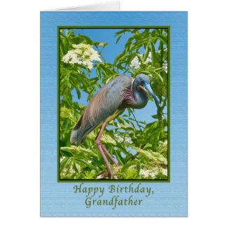 Födelsedag farfar, Tricolored Heron i ett träd Hälsningskort