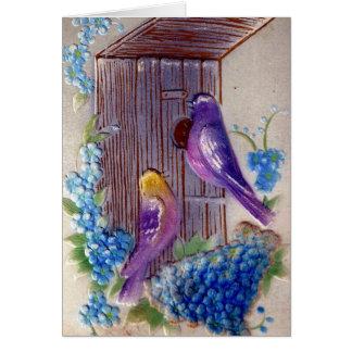 Födelsedag för fågelandBirdhus Hälsningskort