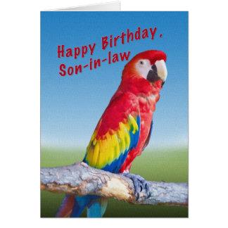 Födelsedag Son-i-lag, Macawpapegoja Hälsningskort