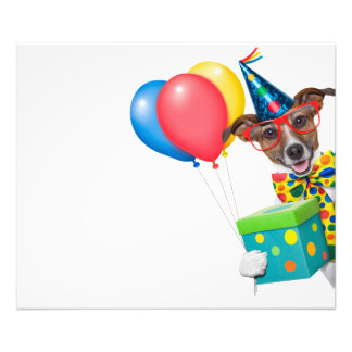 Födelsedaghund med ballongtien och exponeringsglas fototryck