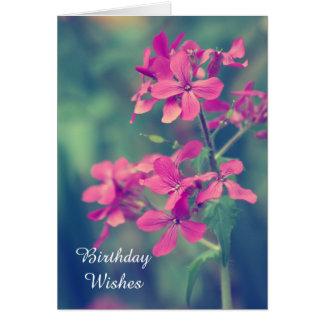 Födelsedagönskemål, för Phloxblommigt för vintage Hälsningskort