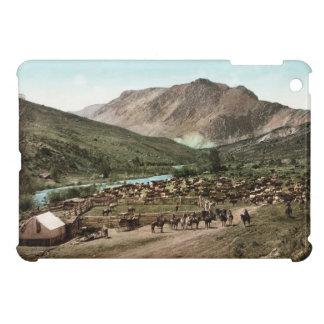 Fodral 1898 för fullföljande för Colorado Roundupi iPad Mini Fodral