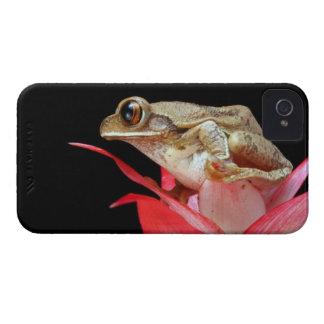 Fodral för blackberry bold för foto för röd blomma iPhone 4 Case-Mate case