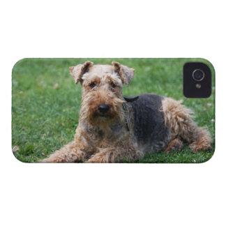 Fodral för blackberry bold för foto för walesisk T Case-Mate iPhone 4 Cases