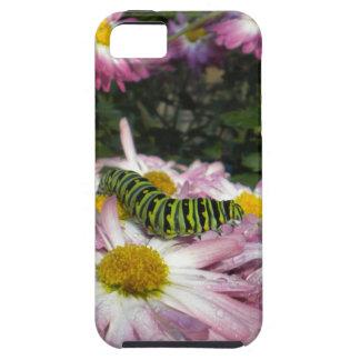 Fodral för Caterpillar promenadiPhone 5 iPhone 5 Fodral