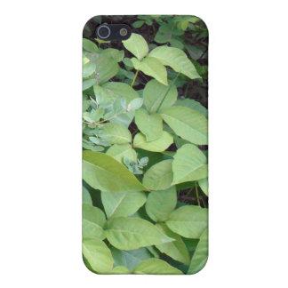 Fodral för giftmurgrönaiPhone 5C iPhone 5 Hud