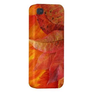Fodral för höst löviPhone 4 iPhone 4 Cases