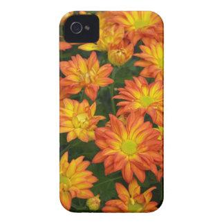 Fodral för iphone 4 för blom- tryck för orange Case-Mate iPhone 4 case
