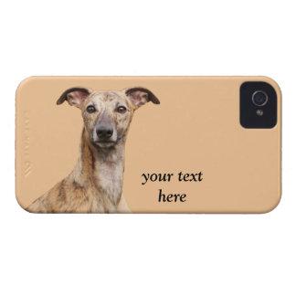 Fodral för iphone 4 för Whippet hundfoto mattt iPhone 4 Case-Mate Cases