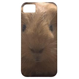 fodral för iPhone 5 med försökskaninen iPhone 5 Cases