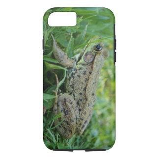 Fodral för iPhone 7 för Bullfrog tufft
