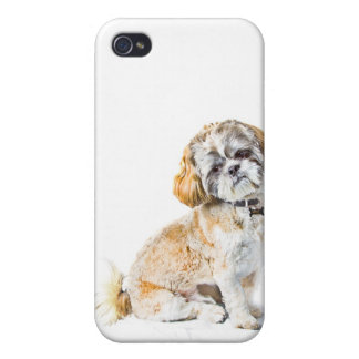 Fodral för Shih Tzu hundiPhone 4/4S iPhone 4 Cover
