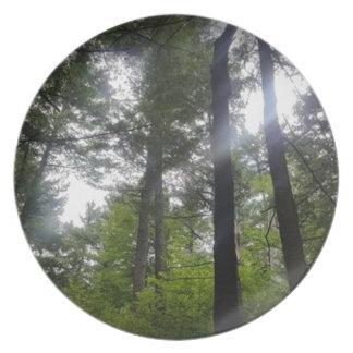 fönster-till--canopy-kevin-humphrey tallrik