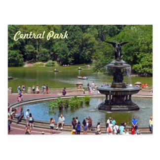 Fontän och sjö i Central Park, New York City Vykort